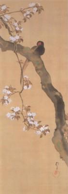 《花鳥十二ヶ月図:3月 桜に雉子図(さくらにきじず)》