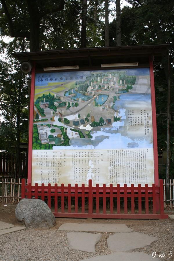 大宮 氷川神社 11